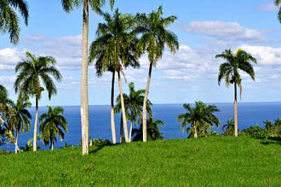 Lot with Ocean View and Close to the Beach