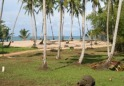 Parcel within Gated Beachfront Community