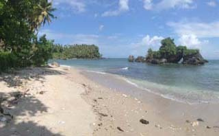 Tropisches Paradies am Strand in Samana